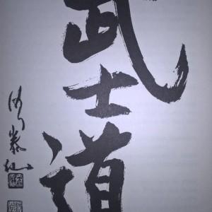 Der-Weg-der-Samurai